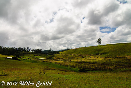 Ooty Mountain Trail 2