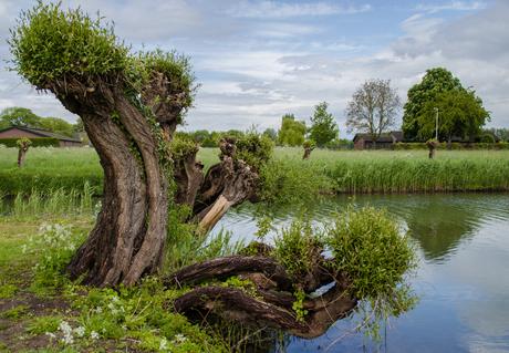 Landschapsmonument aan de Linge
