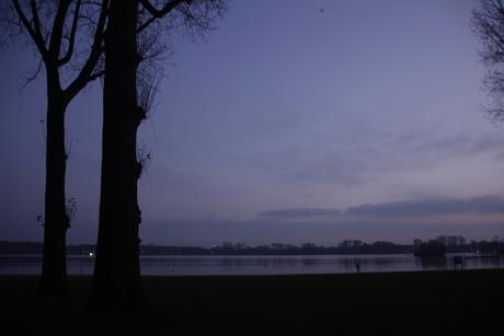 Prachtige silhouetten van de bomen!