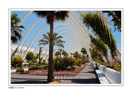 Calatrava-valencia