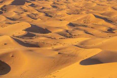 Uitzicht over de Sahara