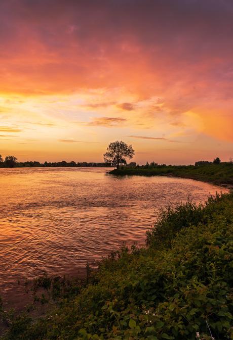 Pinky sunset