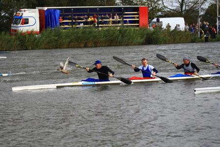 Dierenbeul! - Is dit een kano wedstrijd, of dieren mishandeling? Het is de mascotte die de weg wijst.  Gr http://digidik.nl/ - foto door D.Laninga op 13-10-2009 - deze foto bevat: sport, natuur, dieren, ontspanning, kano, varen