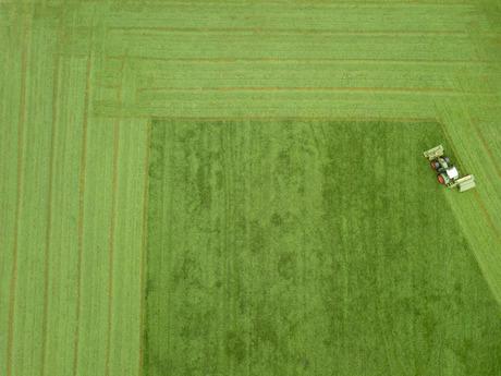 Boeren kunst
