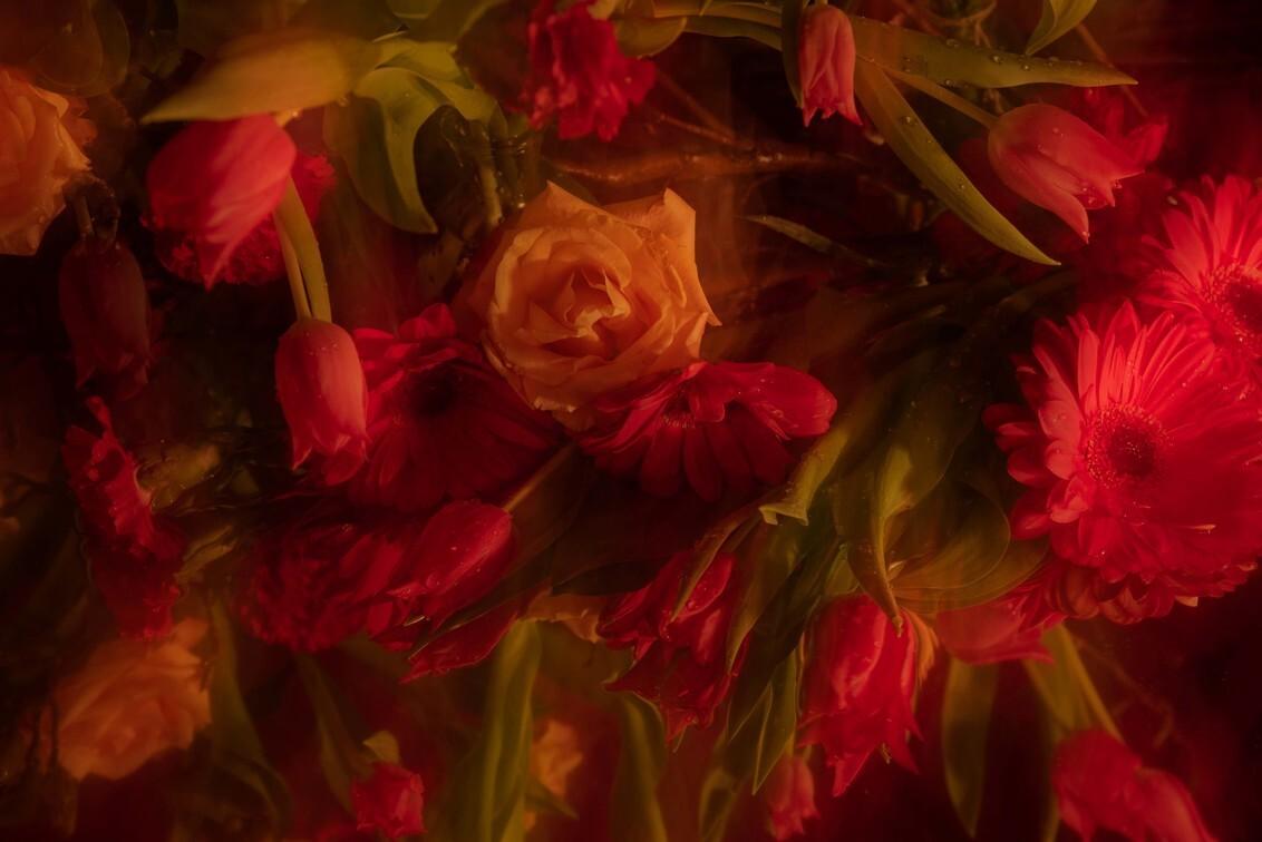 bloemen, tulpen en roos icm - bloemarrengement met tulpen, stillevem - foto door Mvbindsbergen op 27-02-2020 - deze foto bevat: bloem, roos, tulp