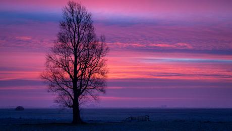 Op een koude December morgen