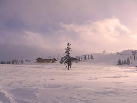 Winter Piste