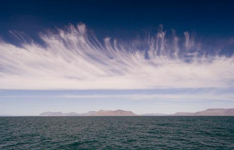 Baai van Reijkjavik