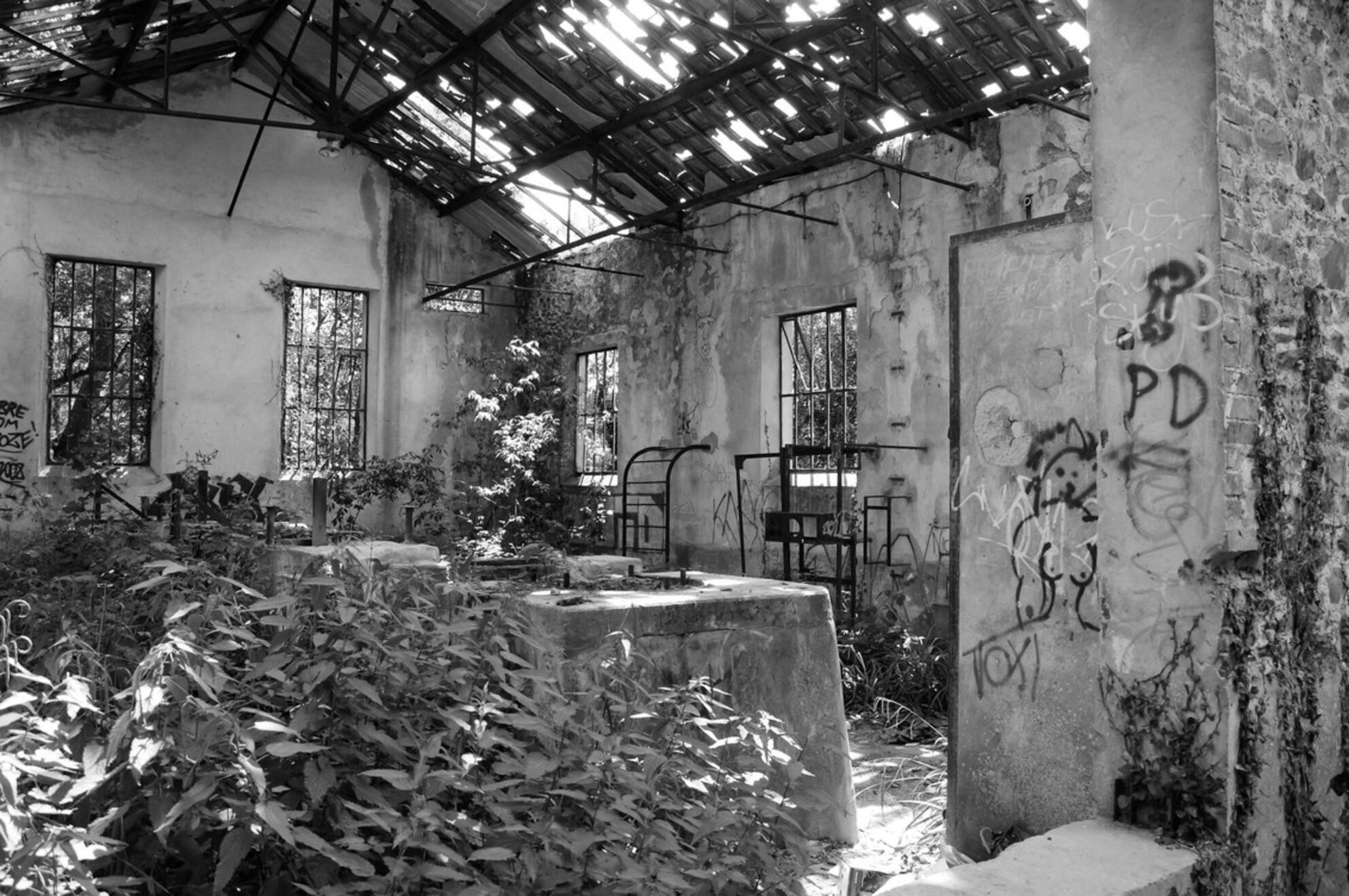 Begroeid - Tijdens een wandeling in Normandïe kwam ik dit oud sluishuisje tegen, helemaal overgroeid en vervallen - foto door brunvanh op 13-10-2010 - deze foto bevat: vervallen, begroeid