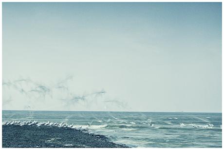1,3 seconde aan het Noordzeestrand