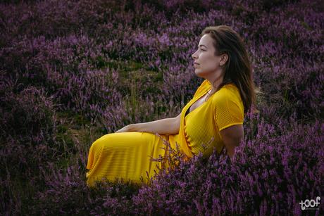 In the moorlands...