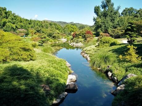 Net de Japanse tuin
