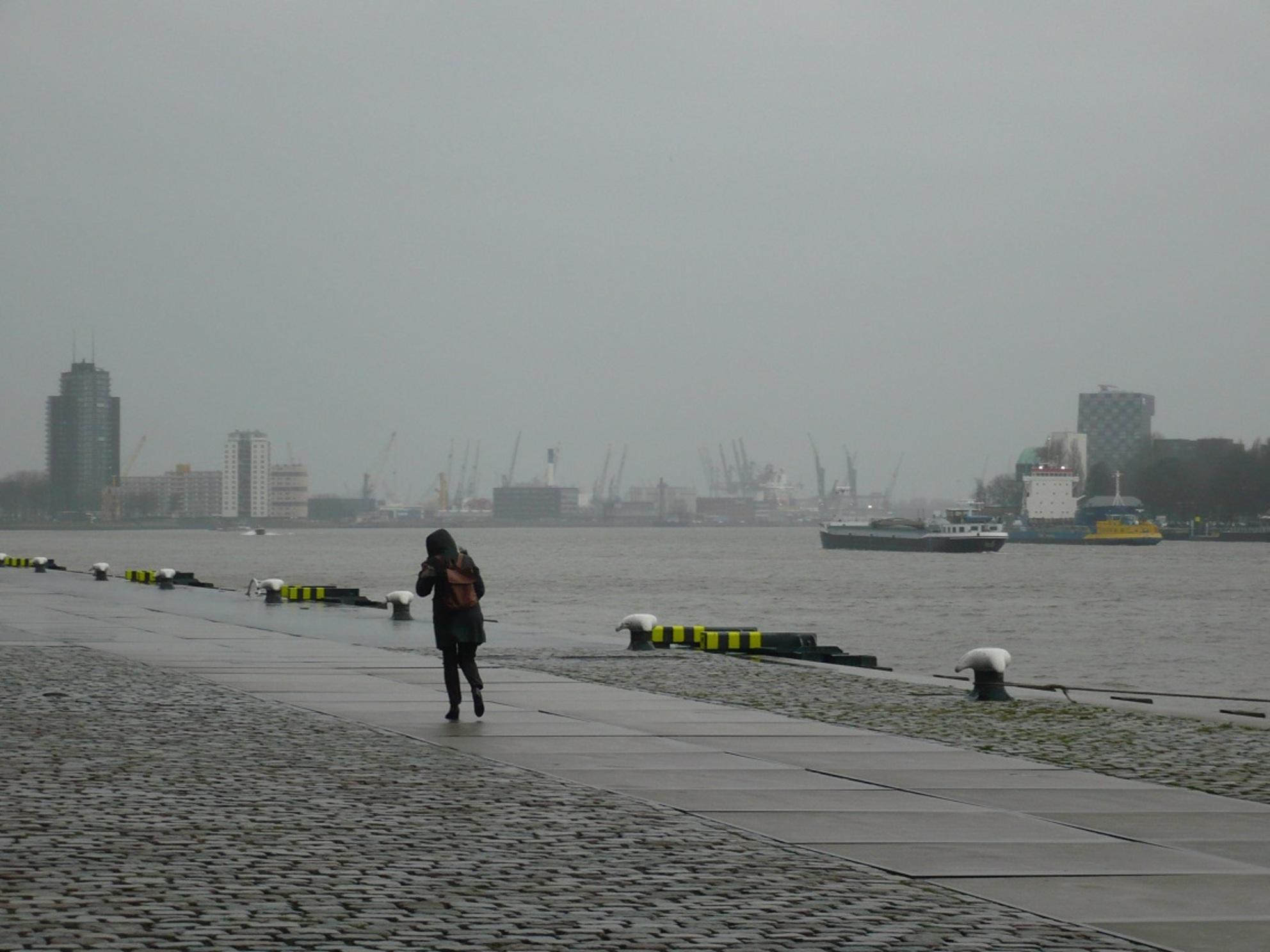 tegenwind - Op deze grauwe dag liep de vrouw  moeizaam tegen de regen en wind in over de verlaten Holland Amerikakade. - foto door willem4772 op 15-01-2020 - deze foto bevat: water, rotterdam, regen, kade - Deze foto mag gebruikt worden in een Zoom.nl publicatie