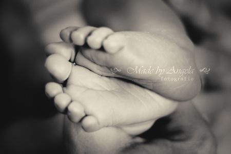 10 teentjes - Newborn voetjes - foto door boezerfotografie op 22-08-2013 - deze foto bevat: baby, voeten, voetjes, tenen, newborn, teentjes
