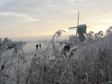Winter op Kinderdijk 2