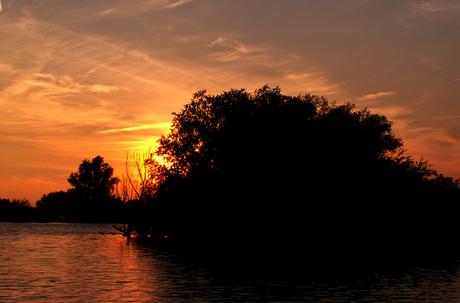 Zonsondergang in de Biesbosch
