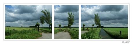 Lijnen in het Gelderse landschap
