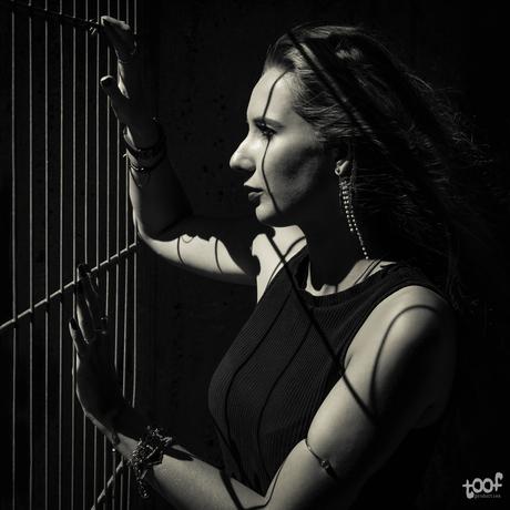 Fences and shadows...