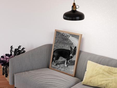 The photo frame - Bewerkte foto. Dus niet bestaande woonkamer,  alles er in geplakt. de kracht van photoshop zal ik maar zeggen. LOL - foto door artmen op 12-04-2021 - deze foto bevat: hond, bankstel, eigendom, meubilair, comfort, fabriek, verlichting, textiel, interieur ontwerp, zoogdier