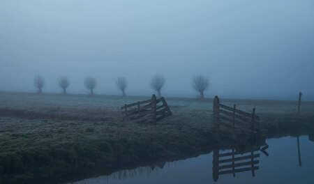 Morgen rust. - Stilte in de polder, 's-morgens vroeg. - foto door geronimo1223 op 03-03-2021 - deze foto bevat: lente, licht, landschap, mist, zonsopkomst