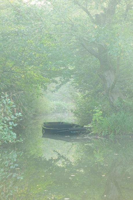 Boot in de mist