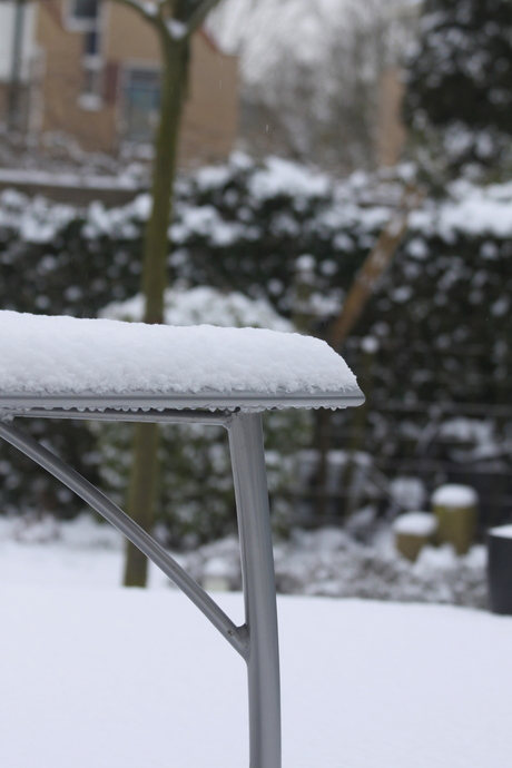 De sneeuw dekt goed!