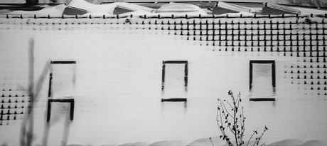 0863 Snow.