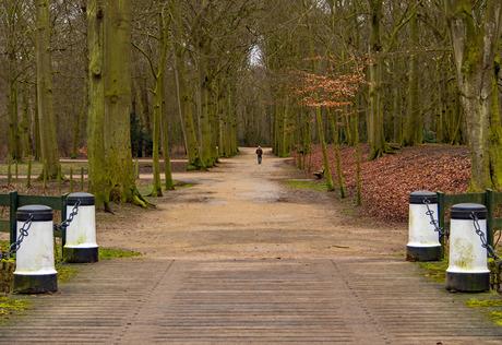 2017-03-04 bruggetje Velserbeek