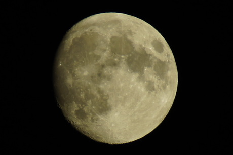 Juli Maan