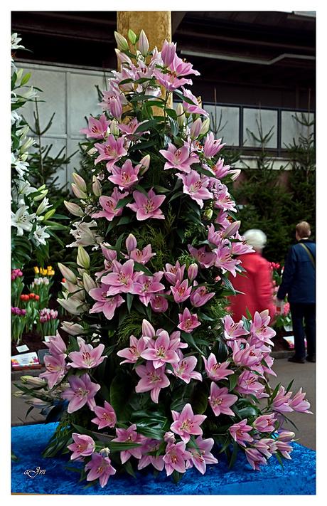 Holland flower festival