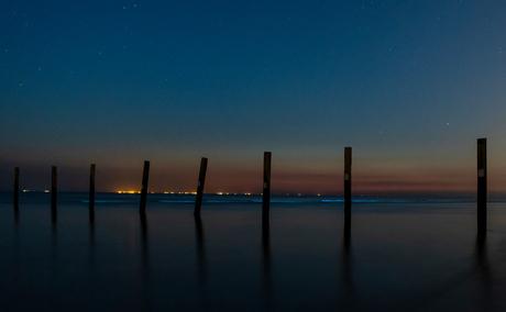 Zeevonk Nachtfoto Langevelderslag Strand