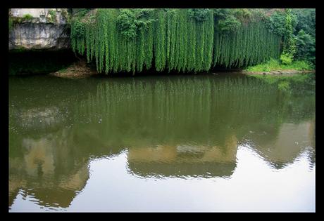 Hangend groen