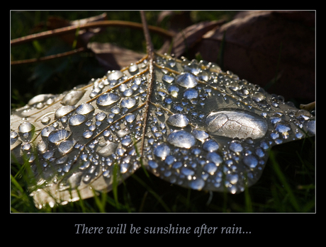 There will be sunshine after rain...