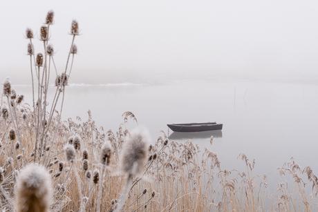 Winter aan de Waal