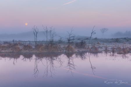 Reflected Trees! - - - foto door KarindeBruin op 24-03-2021 - deze foto bevat: lucht, wolken, zon, water, natuur, licht, spiegeling, landschap, mist, duinen, zonsopkomst, bomen, meer, maan, kust, lange sluitertijd