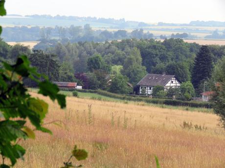 Limburgs landschap met vakwerkhuisje