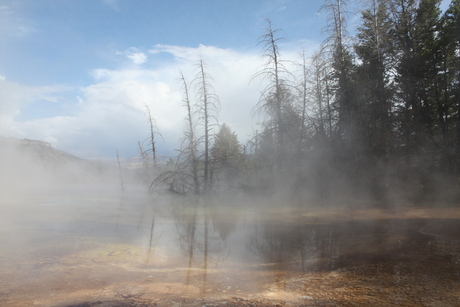 Spooky Yellowstone NP