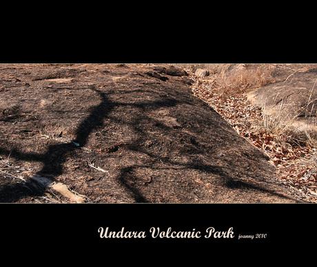 Undara Volcanic Park-7