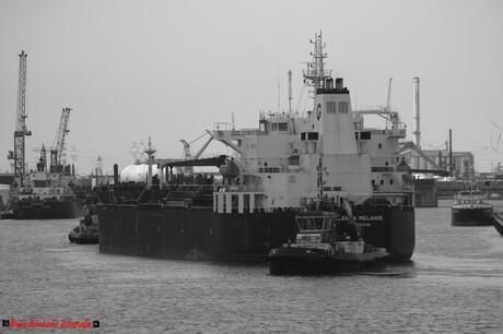 Oil Tanker in Antwerpen