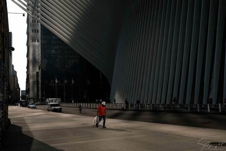 New York - The Construction worker of Oculus