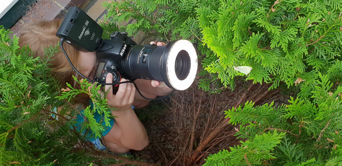 The making of . . . . . - Bij deze een foto van onze dochter, volledig in haar element, foto's maken van dieren.... - foto door RBvandaag op 18-06-2018 - deze foto bevat: macro, vlinder, koolwitje