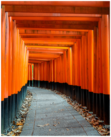 Impressions of Japan 01 - Fushimi Inari Taisha Shrine