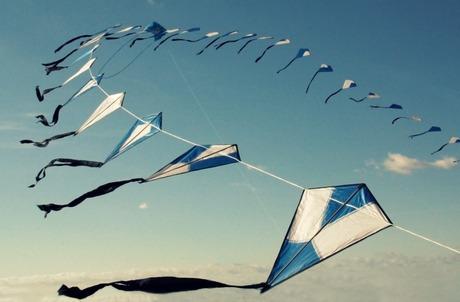 Blue kites