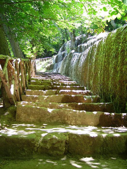 stairs - natuurpark spanje. - foto door schrijvenmetlicht op 21-11-2009 - deze foto bevat: stairs