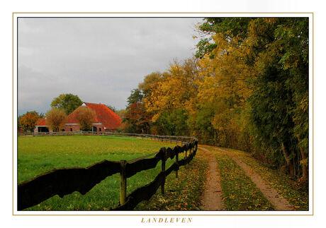 Landleven in de herfst