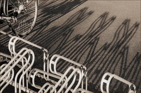 De laatste fiets..........