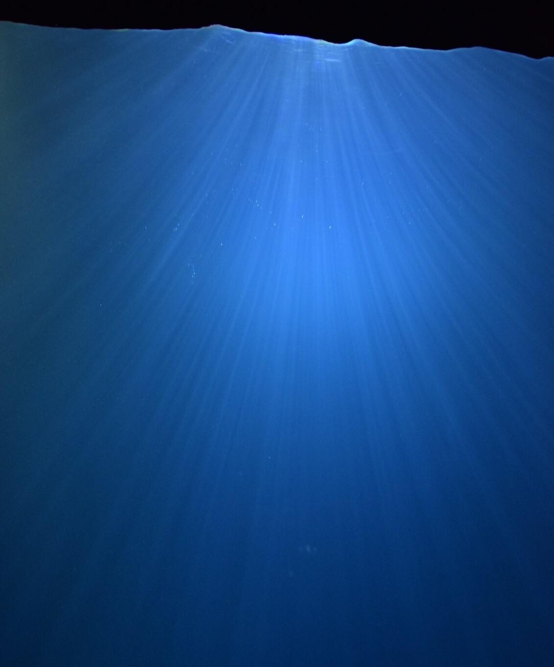Lichtstralen in het water - - - foto door dvharen89 op 29-12-2019 - deze foto bevat: blauw, zon, water, dierentuin, natuur, licht, aquarium, arnhem, aqua, stralen, Burgers'Zoo