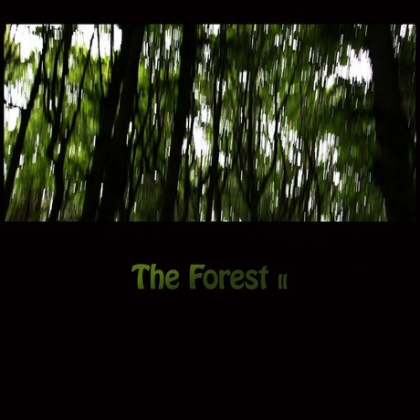 The Forest II