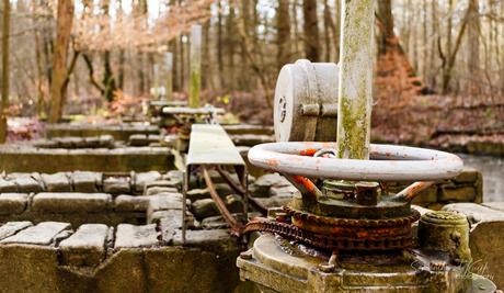 Watermanagement in het Waterloopbos