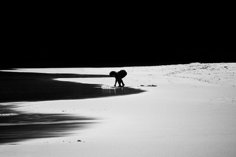 Innocence of shadows